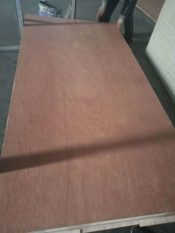 Lightweight Poplar Core Plywood , Exterior Grade Plywood Sheets 1220*2440*2.5-18mm